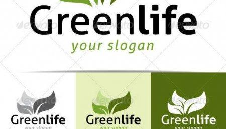 """""""Green life"""" sağlamlıq mərkəzi işsizləri necə tələyə salır? – Şok fırıldaq/Foto"""